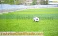 GRASS SINTETICO WMSGRASS AL MEJOR PRECIO A NIVEL NACIONAL