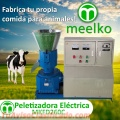 Maquina Meelko para pellets con madera 260 mm electrica 160-250 kg/h - MKFD260C