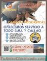 «¤Tecnicos CAMARAS FRIGORIFICAS 7590161¤» en pachacamac