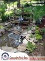 Estanques y Cascadas Artifciales, con decoraciones de plantas naturales