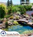 Estanques de jardin , estanques de agua, fuente de agua